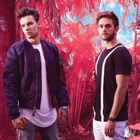 Liam Payne con Zedd 'Get Low' video