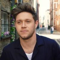 Niall Horan estrena nuevo material 'Nice To Meet Ya'